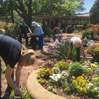 Earth day group in springs