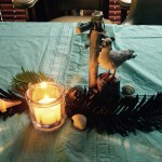 Decorations for cruise party with seagulls, shells, candles and bottles with very interesting messages in them!